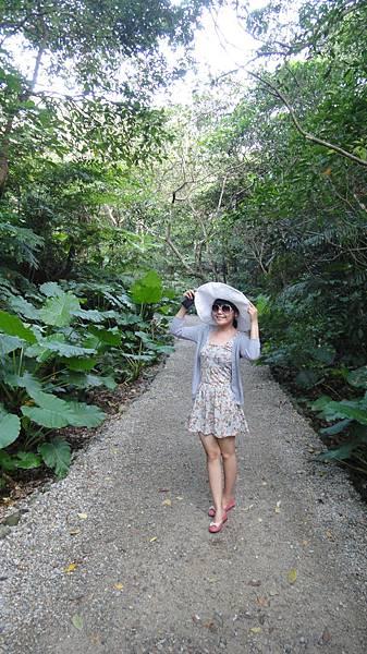 富陽生態公園超級潮濕!好多蕨類~