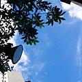 7/9 颱風要來了天好藍!