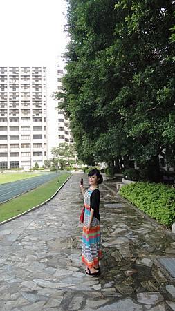 穿過亞東科技學院就是淑宜家