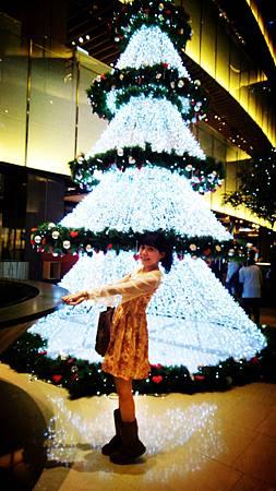每天都在看的京站聖誕樹