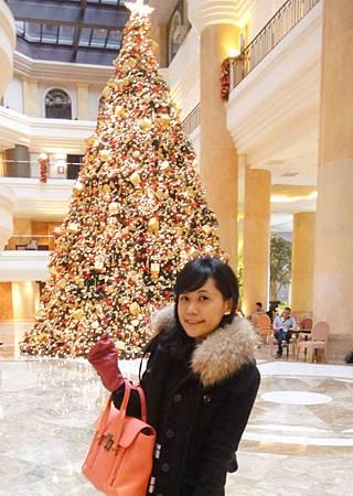 逛完街打道回府順路去看今年最喜歡的君悅聖誕樹