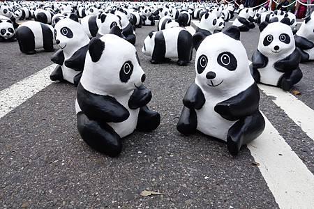 吃完想說碰運氣去市府看第一天貓熊展