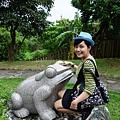 和平公園好多蛙!
