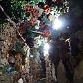 竹灣大義宮珊瑚