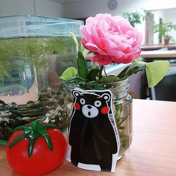 9/4 同事送的玫瑰花