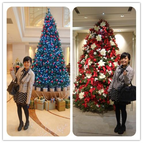 大倉久和跟老爺的聖誕樹今年也不行