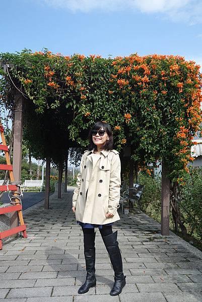 01-23 鶯歌永吉公園 (3).JPG