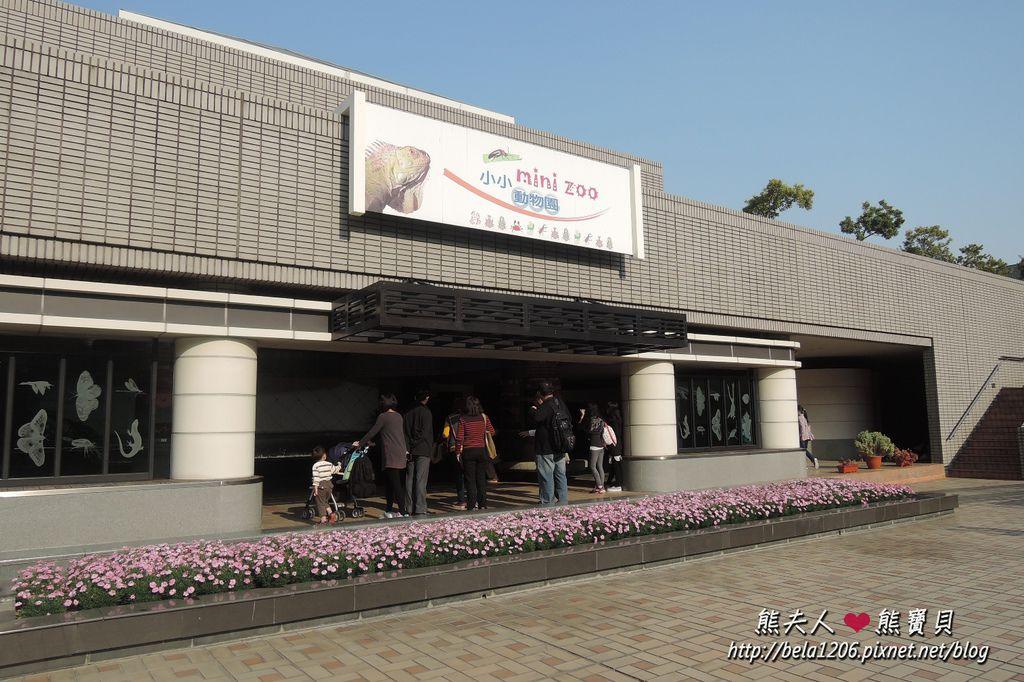 科博館小小動物園.JPG