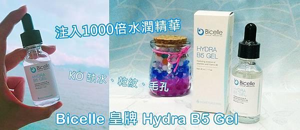 注入1000倍水潤精華 - KO缺水、乾紋、毛孔!Bicelle 皇牌 Hydra B5 Gel ...