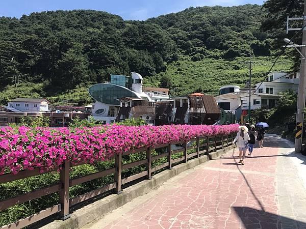 2018.8.21風之丘_181002_0010.jpg
