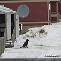 北極圈地帶風光2013.05.25