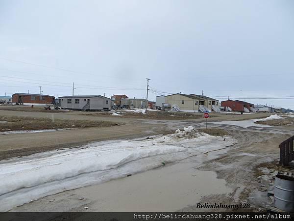 北極圈地帶融雪後的泥道