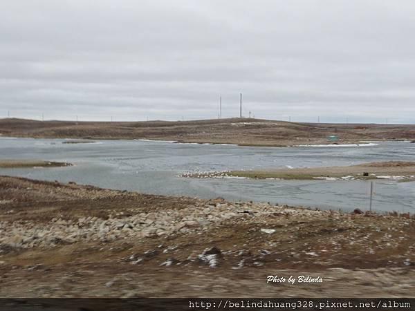 北極圈地帶社區外緣