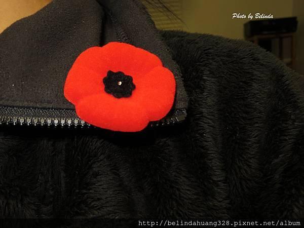 加拿大國殤紀念日佩戴的塑料虞美人花