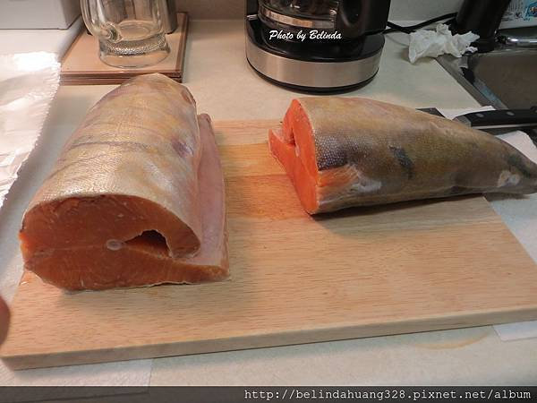 北極鮭魚 Arctic Char 2