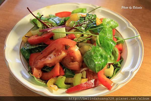 草本植物Sorrel Salad-2