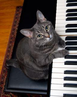 nora piano.jpg