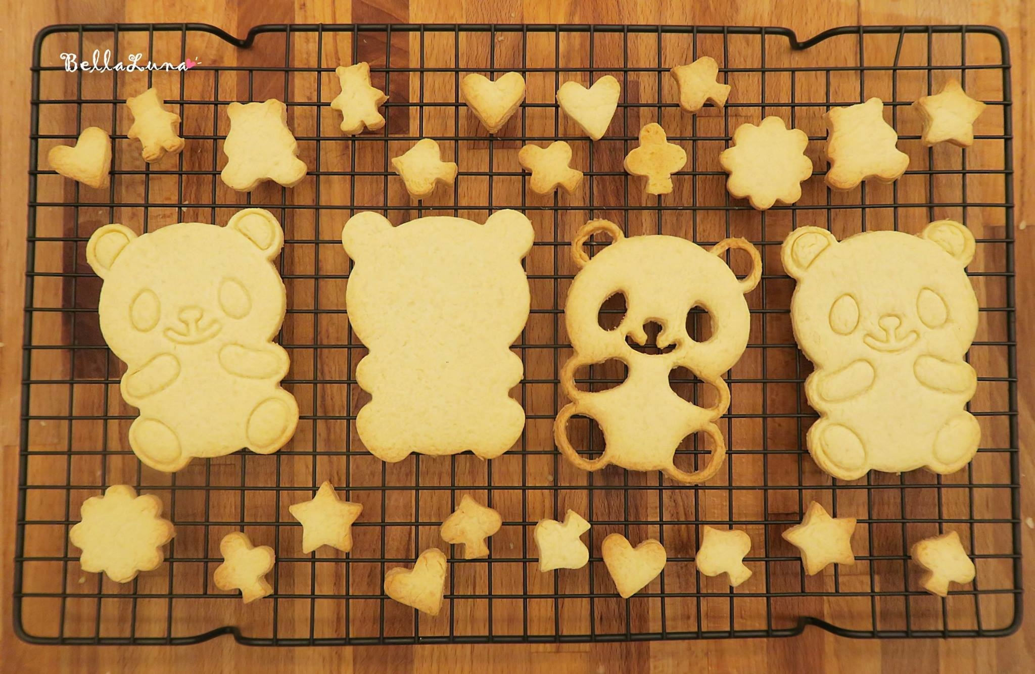 Panda 33.jpg