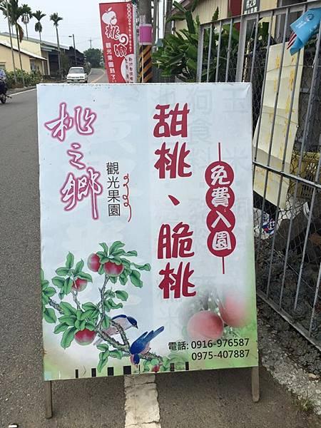 新社甜桃14.jpg