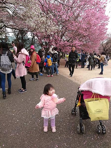2017-03-31 11.41.43.jpg