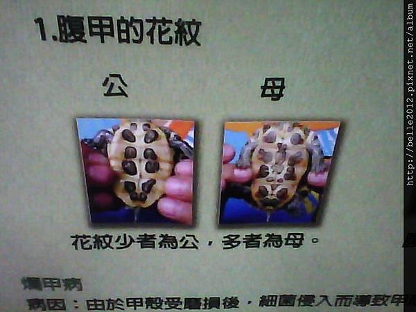 image20110603_125207.jpg