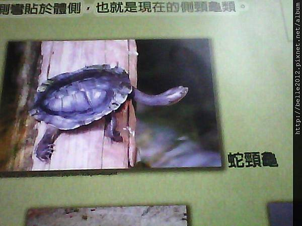 image20110603_125416.jpg