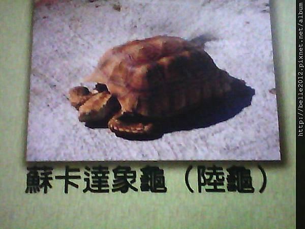 image20110603_125405.jpg