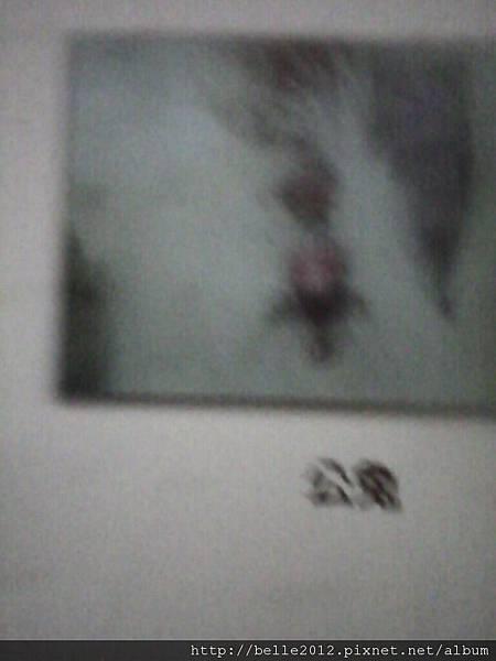 image20110603_125001.jpg