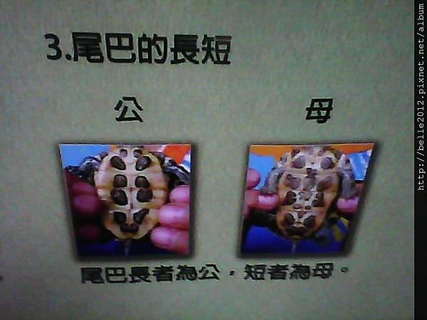 image20110603_125228.jpg