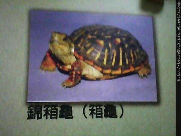 image20110603_125424.jpg