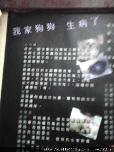 image20110603_123811.jpg
