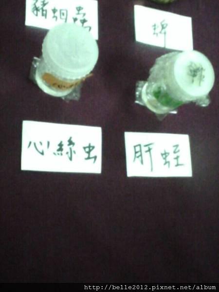 image20110602_124425.jpg