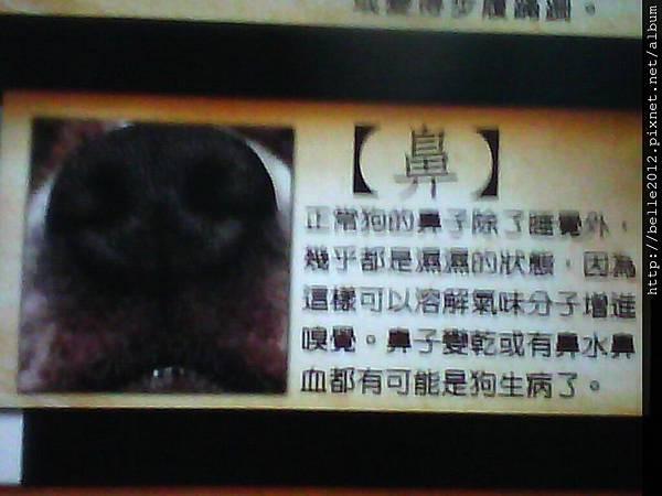 image20110603_123514.jpg