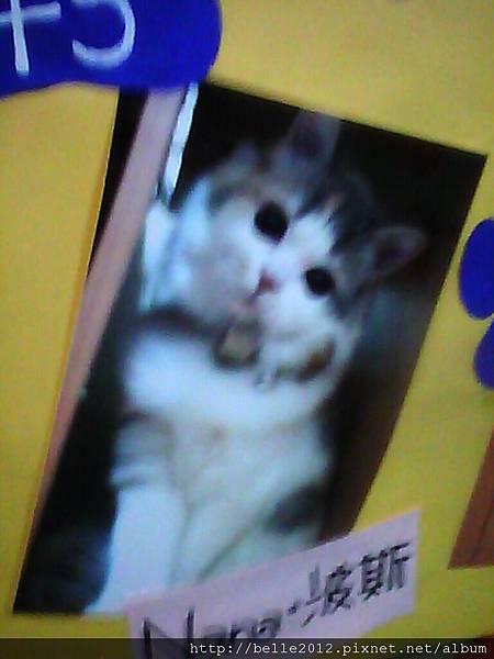 image20110603_130129.jpg