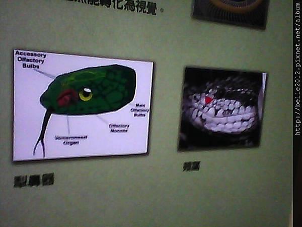 image20110603_125525.jpg