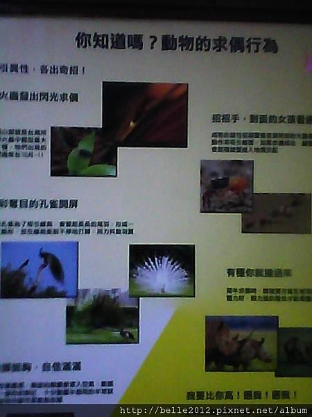 image20110603_124755.jpg
