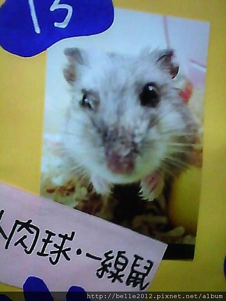 image20110603_125941.jpg