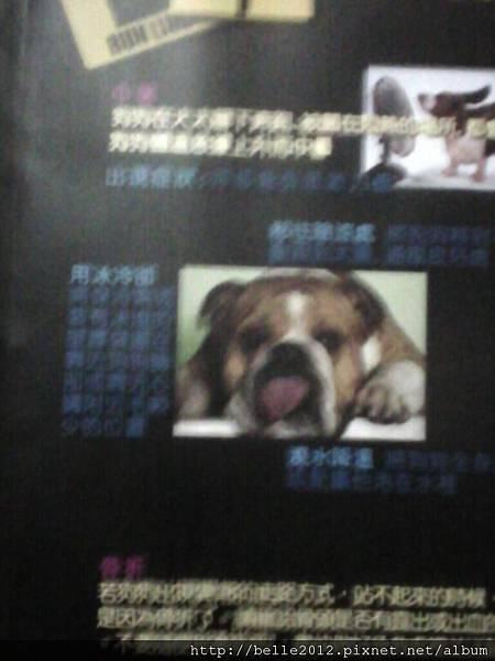 image20110603_123923.jpg