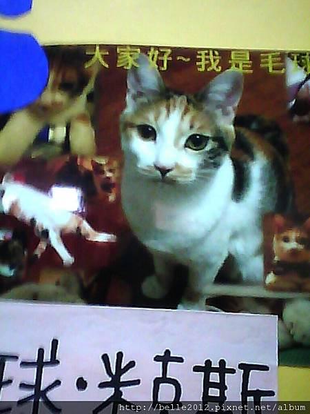 image20110603_125753.jpg