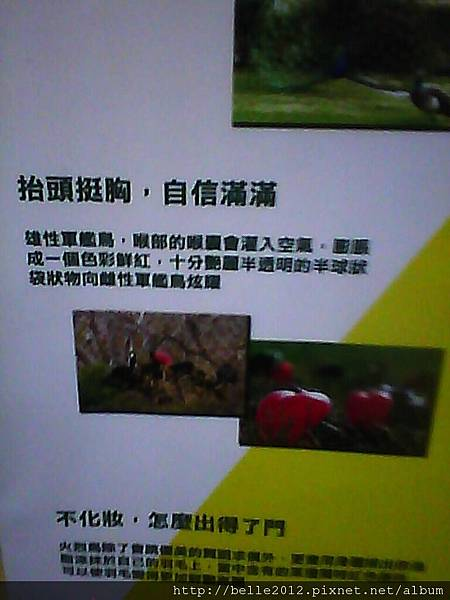 image20110603_124853.jpg
