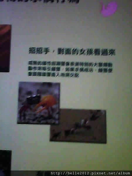 image20110603_124827.jpg