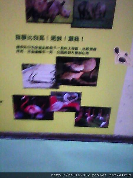 image20110603_124836.jpg