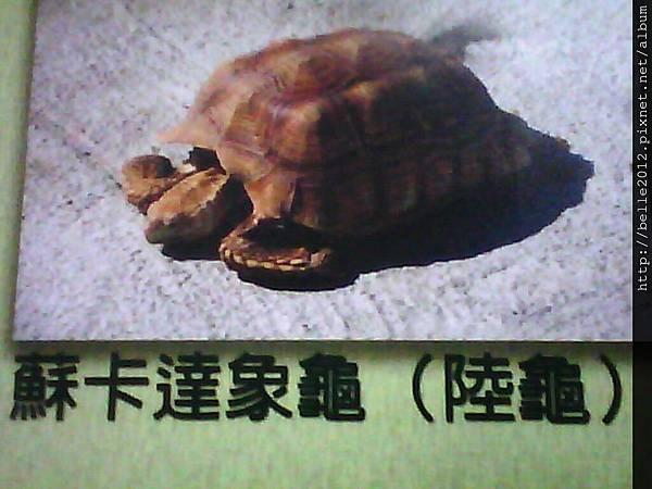 image20110603_125434.jpg