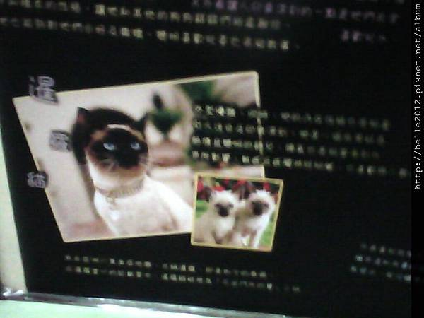 image20110603_124624.jpg