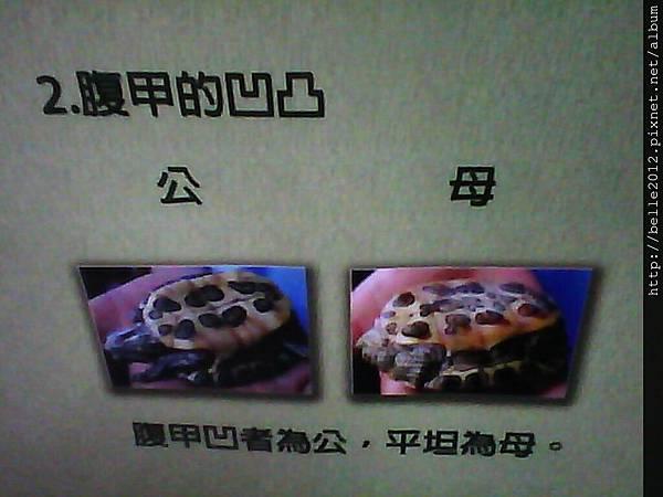image20110603_125219.jpg