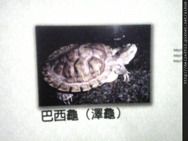 image20110603_125341.jpg