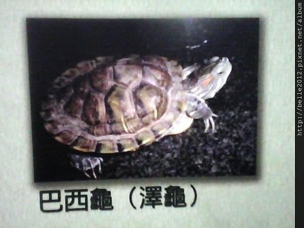 image20110603_125443.jpg