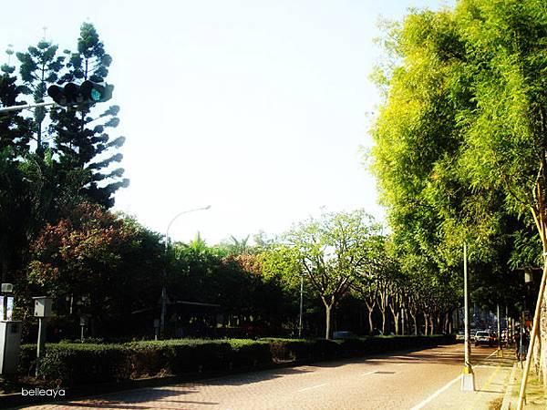 台中市國立自然科學博物館
