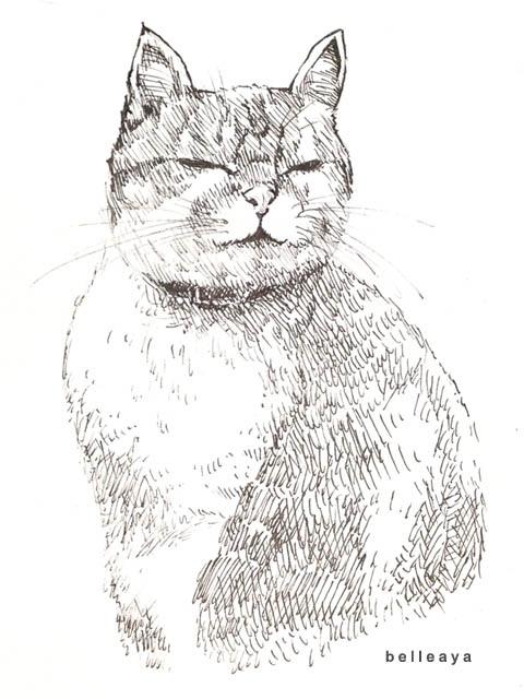 李奧納多貓咪