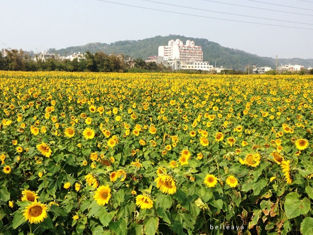 2014.01.18 從新竹騎西濱回台中